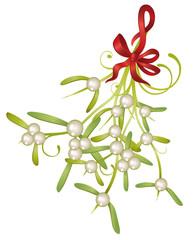 Mistel, Mistelzweig, Weihnachten, Jul