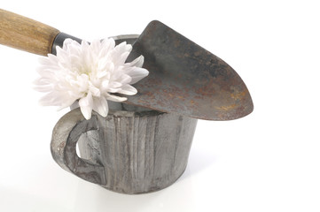 Gardening concept still life with spades, pot and white flower