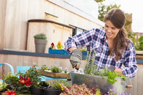 Kobieta sadzenia pojemnik na dachu ogrodu