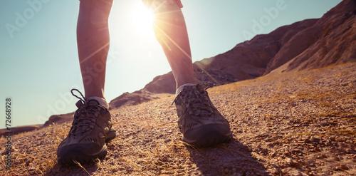 Desert - 72668928