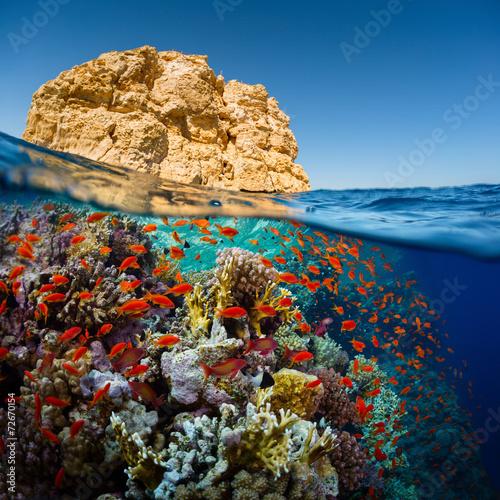 Leinwandbild Motiv Red Sea