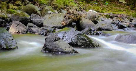 Wunderschöner grüner Gebirgsbach