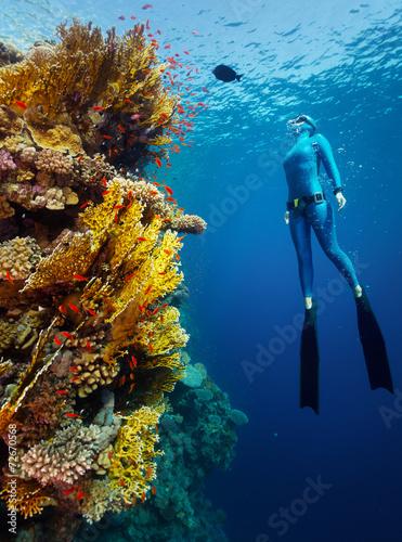 Freediver - 72670568