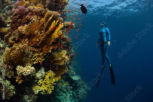 Freediver - 72670715