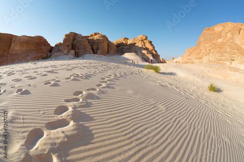 Desert - 72671321