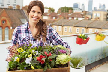 Woman Holding Box Of Plants On Rooftop Garden