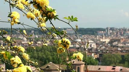 Panorama di Roma con fiori