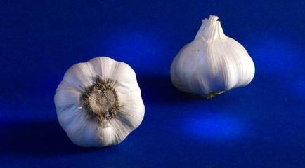 bocciolo d'aglio 2