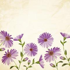 Chrysanthemum card.