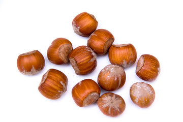 Hazelnuts on a white background seen from above