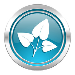 leaf icon, nature sign