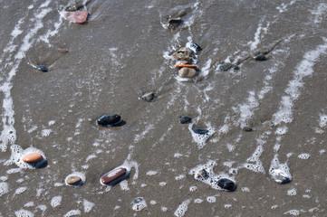 Galets sur la plage
