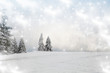 canvas print picture - Christmas background with snowy fir trees