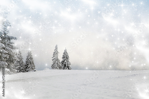 canvas print picture Christmas background with snowy fir trees