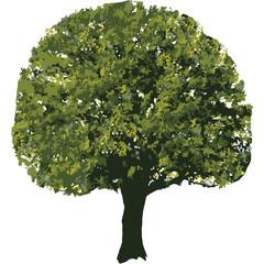 Baum Holz Bau