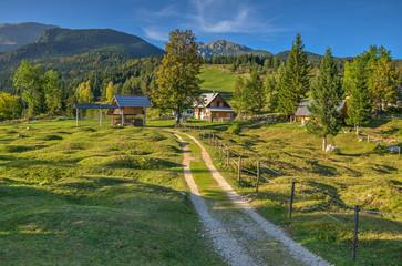 Alpine Meadow Planina Uskovnica in Bohinj