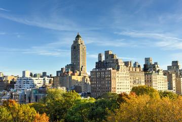 Central Park, Autumn, New York