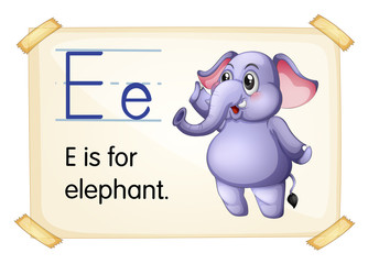 Elephant flashcard