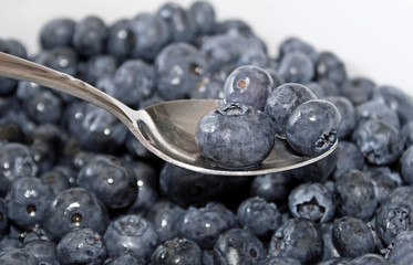 Ripe organic Blueberries - a healthy and nutritious snack