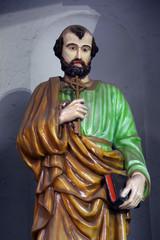 Saint Peter, Cathedral of the Holy Rosary, Kolkata