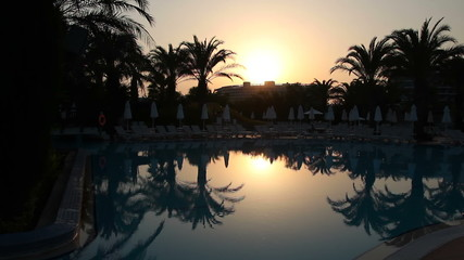 Sunset and Silhouetted Palm Trees Reflected in the Water