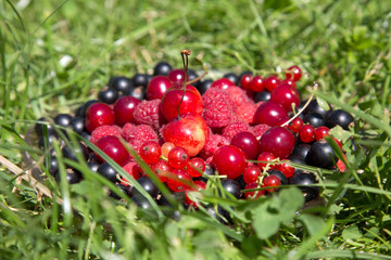 cherry currants raspberries in a glass dish on a green grass