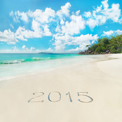 New Year 2015 season concept on azure tropical sandy palm ocean
