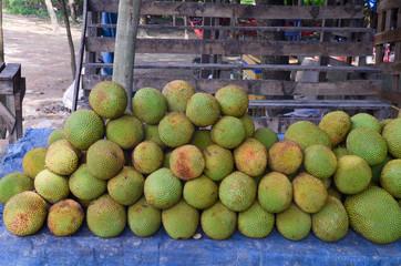 Champedak, bankong (Artocarpus integer)