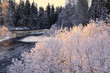 River in winter and tree branches coverred with white frost