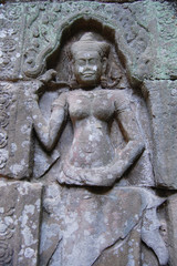 Apsara at  Ta Prohm Temple at Angkor in Siem Reap  Cambodia