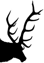 stag silhouette isolated on white