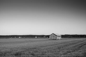 Empty Fields, Full Barns