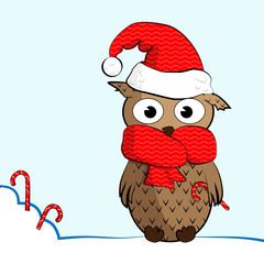 owl_winter