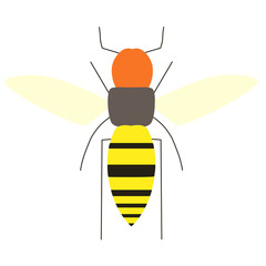 蜂のイラスト