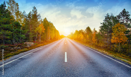 Foto Spatwand Bomen Fall scenic road in Sweden