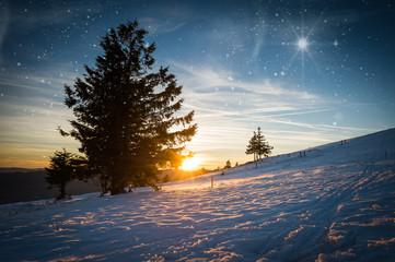 Nuit étoilée de Noël