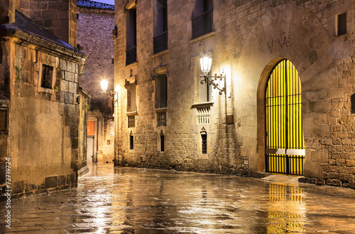 Gothic quarter of Barcelona in wet weather conditions © bbsferrari