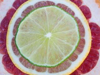 Colorful tropical fruit slices - lemon, lime, red grapefruit