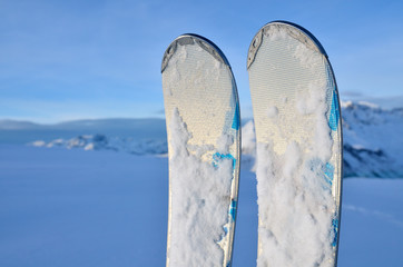 Alpine skis in snow in vertical position. Winter vacations