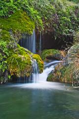 una maravilla de la naturaleza en el rio
