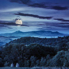 field  in mountains at night