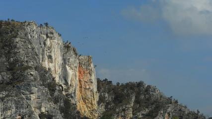 Flock of crows circling menacing cliff in Transylvania
