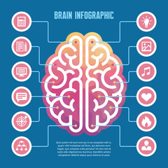 Brain infographic - vector concept illustration with icons