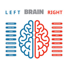 Left and right human brain vector illustration for infographic