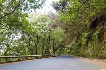 Road through Anaga national park, Tenerife, Spain.