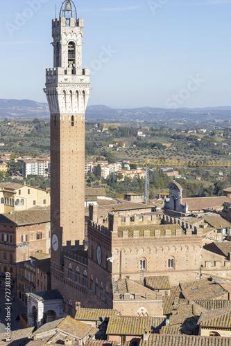Fototapeta Siena torre del mangia