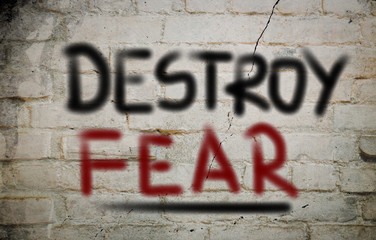 Destroy Fear Concept