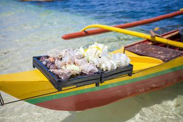 Beautiful colorful seashells in basin on a tropical island