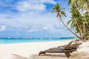 beach chairs and palm tree on sand beach, tropical vacations