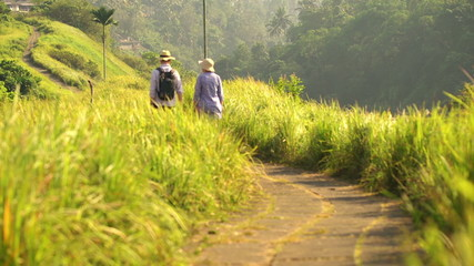 Couple on trip walking, hiking through terraces in Bali